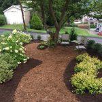 A photo of Linda Barnicott's newly re-designed backyard.